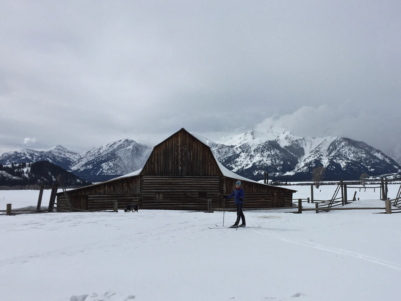 Cross-Country Skiing Mormon Row Tetons