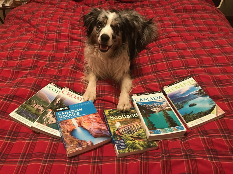 Roo planning next vacation.