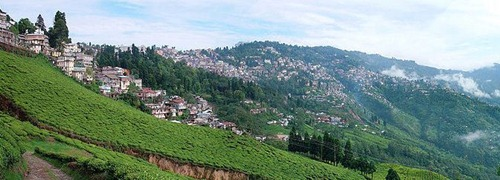 darjeeling Top 10 Tourist Destinations in India