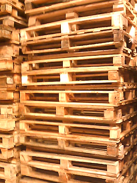 pallets - transgallo 10