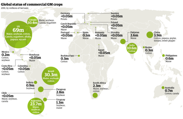 genetically-modified-crops-map
