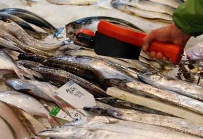 Você come peixe contaminado?