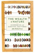 The Wealth of Nature book cover