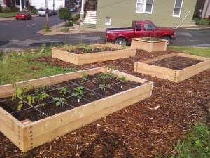 Our Transition group's community garden needed raised beds. So we tried a couple different ways to get them.