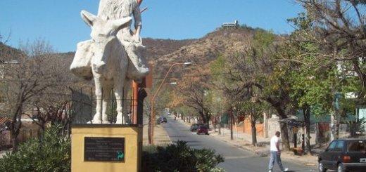 burro Carlos Paz