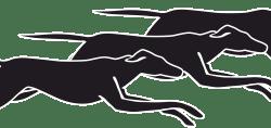 Logo Autobuses Santa Fe
