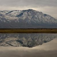 Winter Calm at the Bear River Migratory Bird Refuge