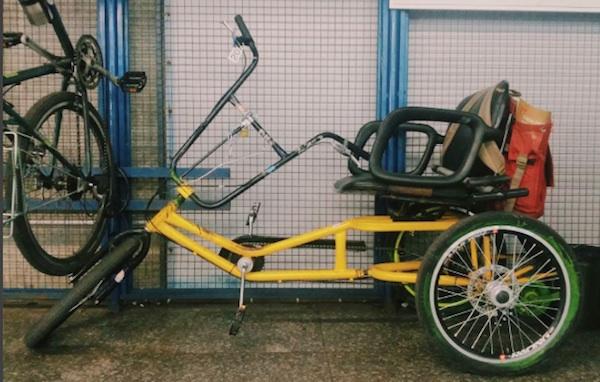 O triciclo de Lineu, por Marina Harkot