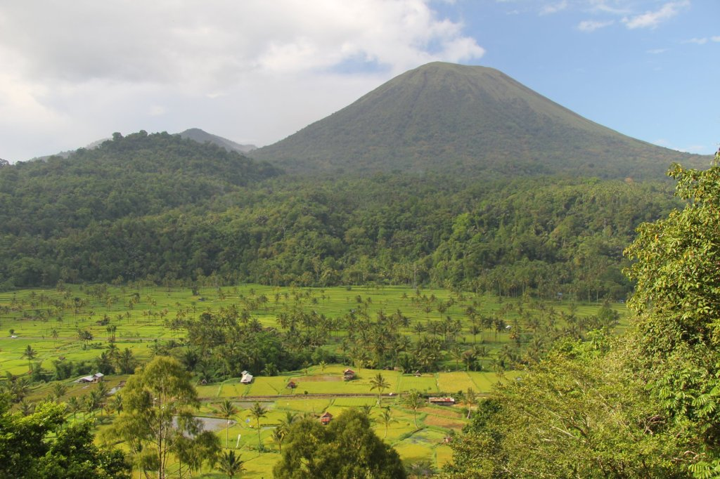 Sulawesi countryside.  Volcanos and rice paddies.