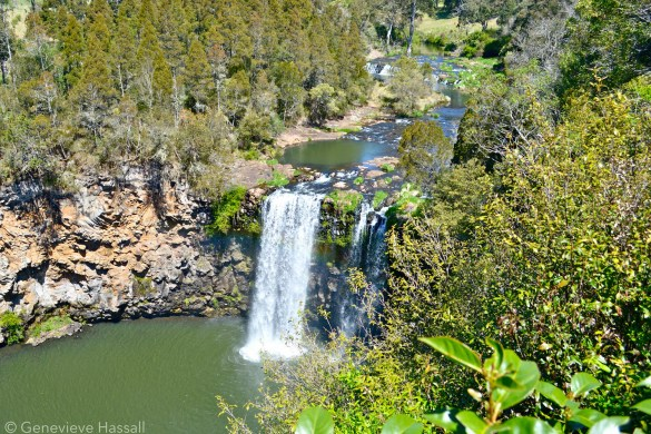 Dangar Falls Waterfall Way NSW Australia Genevieve Hassall