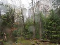 Bridalveil Fall, Wasserfall, Yosemite, Nationalpark, Kalifornien, USA
