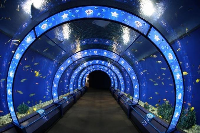 大阪を旅行しよう!家族で楽しめる観光スポットランキング!