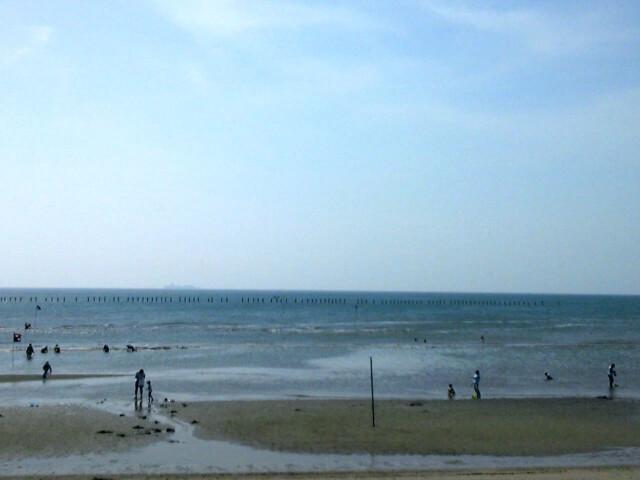 海の公園での2016年潮干狩りはどのくらいの時期から行けば良い?