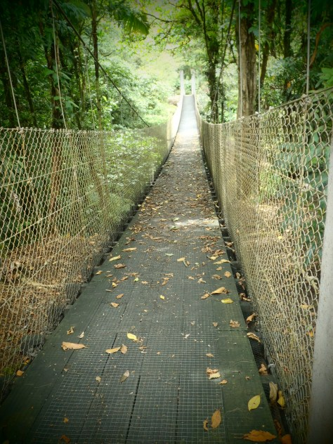 Swinging Bridge; Volcan Arenal, Costa Rica; 2013