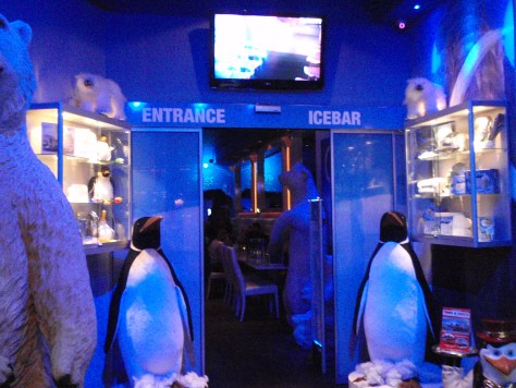 Entrance to the Ice Bar; Amsterdam, Netherlands; 2010