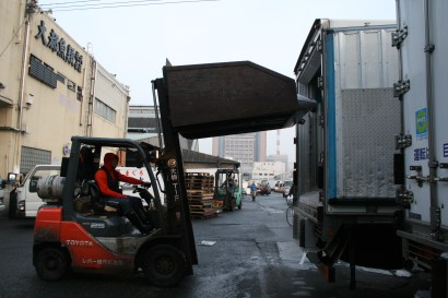 Tunas are forklifted onto a truck at the Tsukiji Fish Market, Tokyo. Photo: Erik Bergin