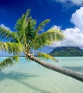 tropical-beach-background-16