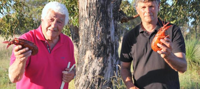 Antonio Carluccio in Margaret River on SBS Thursday
