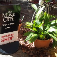 Pieces of Perth: The Muse Cafe