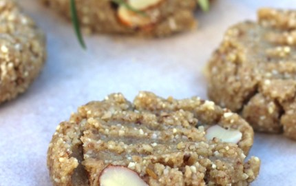 grain free raw anzac biscuits