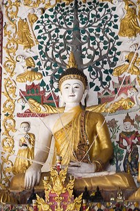 Buddha with strings at a wat on the outskirts of Chiang Rai, Thailand