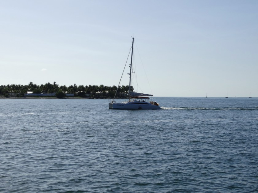 Segelboot Key West
