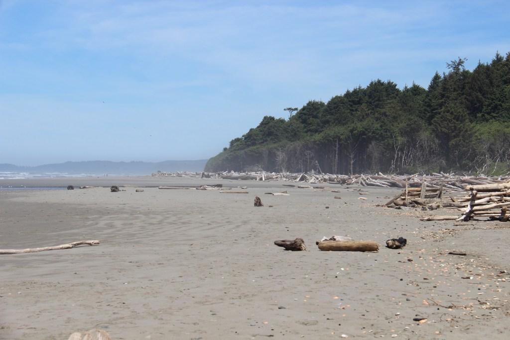 washington-coast-kalaloch-beach-3