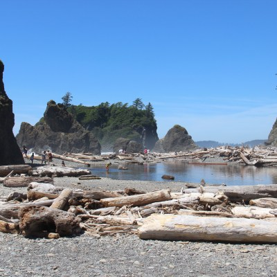 Olympic Peninsula Tour