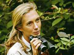 Amazing Women Wednesday: Jane Goodall
