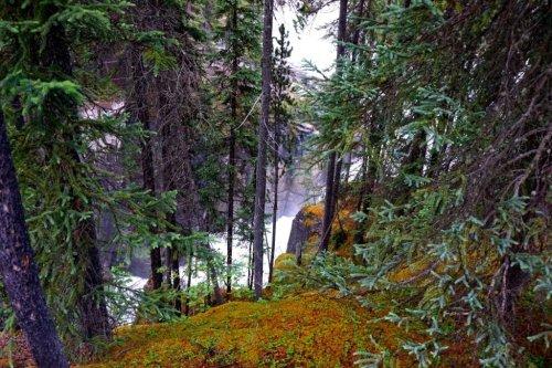 travel Canada Sunwapta falls
