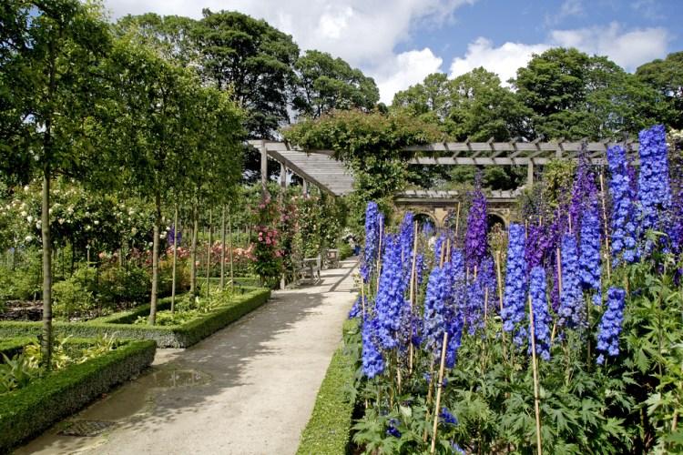 travelthisearthcom-alnwick_garden_united_kingdom-56dd6a9a4d72c