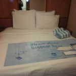 Jade-NCL-Oceanview-room-4-TravelXena