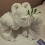 Norwegian-Jade-Towel-Animal-TravelXena
