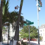 Nassau-Bahamas-East-and-Shirley-Street-TravelXena