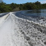 Boat_to_Lamanai_Belize_Travel_Xena_14