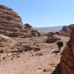 Petra_Jordan_Middle_East_TravelXena_75