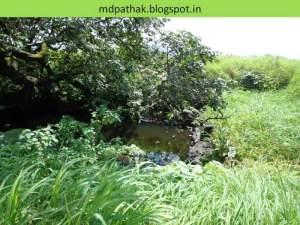 water became dirty at kothaligad