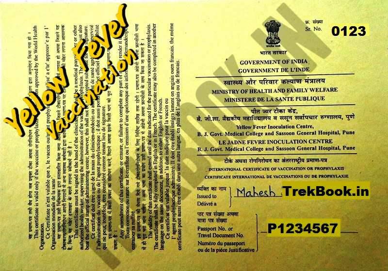 yellow fever international certificate sasoon hospital pune
