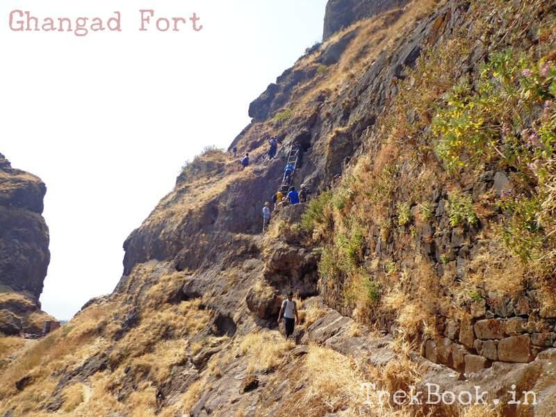 ghangad climbing ladder