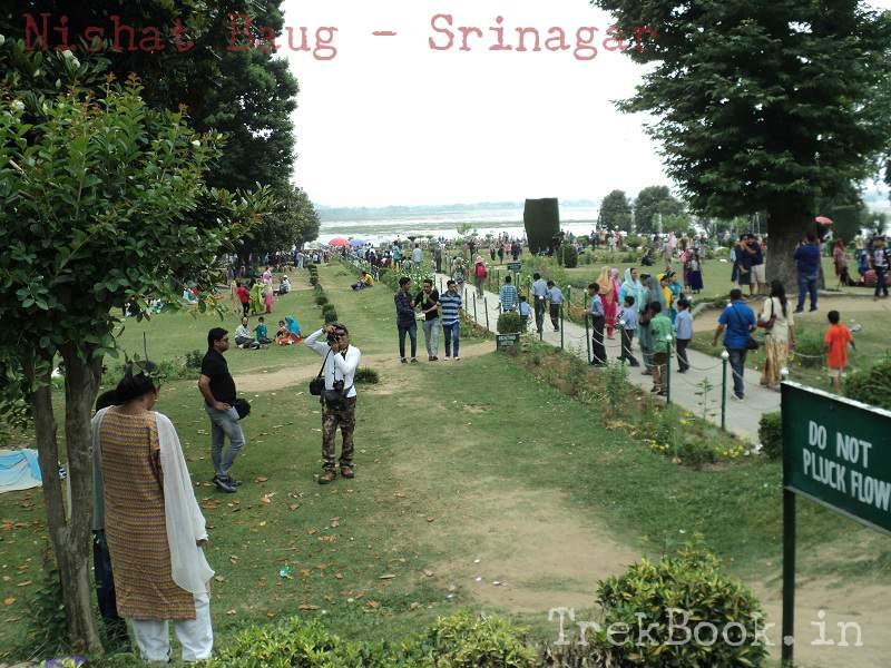 crowd nishat baug srinagar