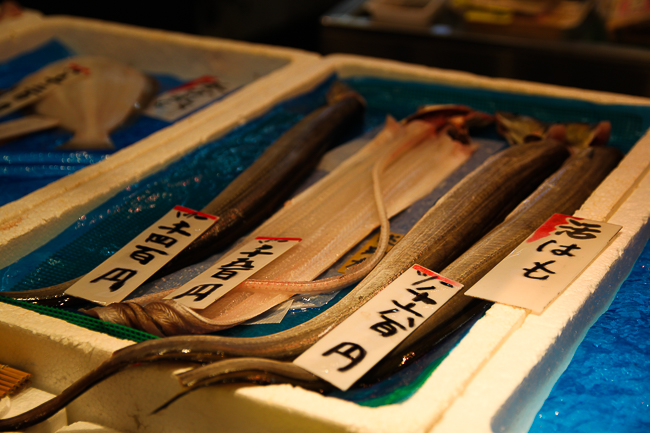 Some kind of flat fish or Eel at Nishiki Market
