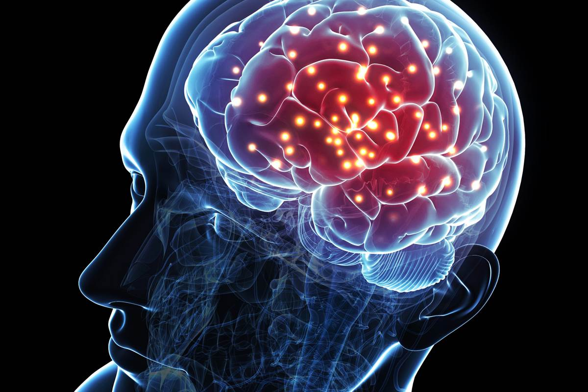 """Scientists Discover """"Jumping Genes"""" Have The Ability to Develop Parts of the Brain"""
