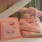 spring butterfly baby shower  (117)
