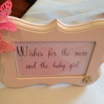 spring butterfly baby shower  (168)