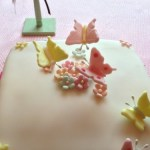 spring butterfly baby shower  (47)