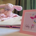 spring butterfly baby shower  (64)