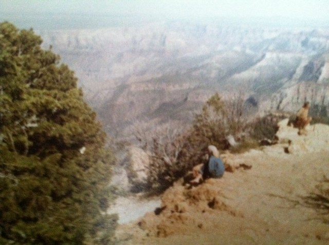 Contemplating the Grand Canyon. One of the best trips of my life - drive-away car across country with Paula & Jane, 1981.