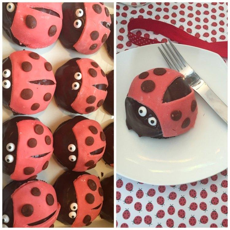 ladybug28