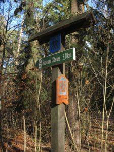 Wanderweg Richtung Aussichtsturm Rauen