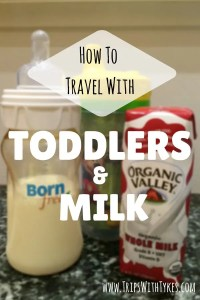 Air Travel with Toddlers and Milk: Air travel with toddlers is challenging enough without worrying about bottles or sippy cups. Make your next flight easier with tips and products for navigating TSA lines with milk for your tod